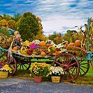 Celebration Of Fall by LudaNayvelt
