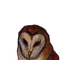 Tyto owl by Xantippe