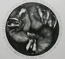 Sleeping Badgers by Compassion Collective