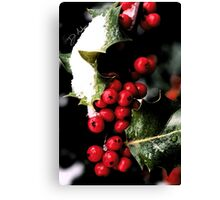 Holiday Holly Canvas Print