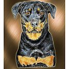 Rottweiler  by didielicious