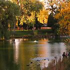 Peaceful pond...Colorado Springs, CO by dfrahm