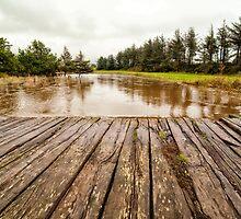Floods by Ovation66