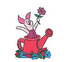 Piglet in a Watering Can Photographic Print