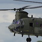 Chinook  by Barrie Woodward
