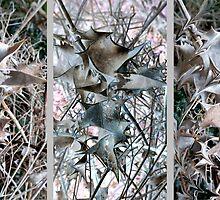 Leaf Lattice in Three's by Vanessa  Warren