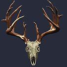 Deer Skull Design by KnightsOfShame