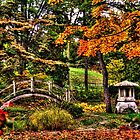 Fabyan Japanese Gardens I by Roger Passman