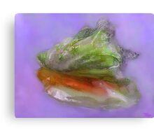 Caribbean Conch Shell Canvas Print