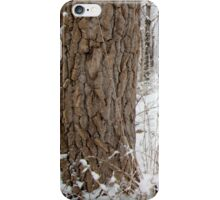 Snowy Country Road iPhone Case/Skin