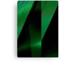 green leaf folds Canvas Print