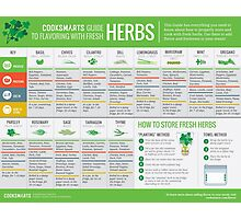 Cook Smarts' Guide to Using Fresh Herbs Photographic Print