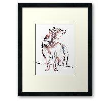 Funky Wolf Framed Print