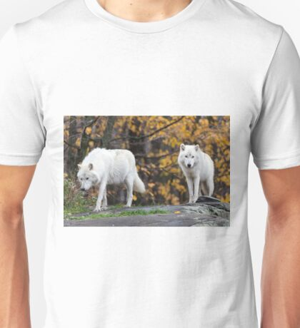 Pair of Arctic Wolves in fall Unisex T-Shirt