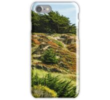 San Francisco Colorful Spring - 2 iPhone Case/Skin