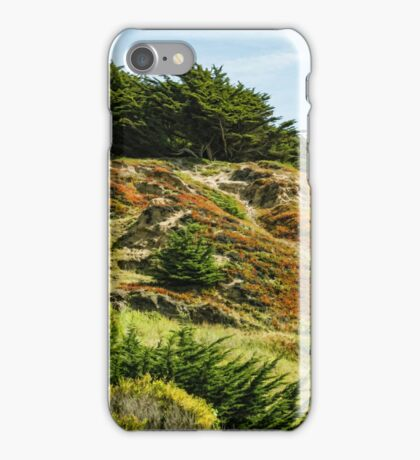 San Francisco Colorful Spring - 2 iPhone Case/Skin
