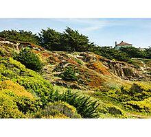 San Francisco Colorful Spring - 2 Photographic Print