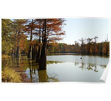 Fall Colors Along White River Poster