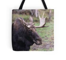 Large moose in a forest Tote Bag