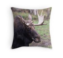 Large moose in a forest Throw Pillow
