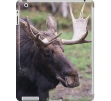 Large moose in a forest iPad Case/Skin