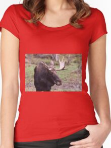Large moose in a forest Women's Fitted Scoop T-Shirt