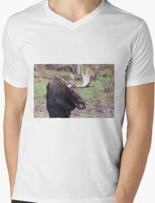 Large moose in a forest Mens V-Neck T-Shirt