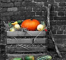 The Pumpkin Crate by Yampimon
