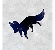 Flying Fox Photographic Print