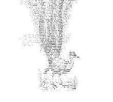 ASCII Lyrebird by GracePhillips