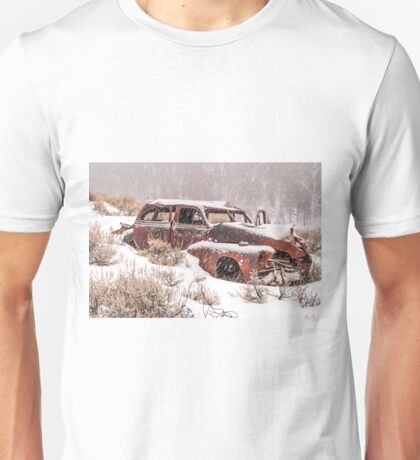 Auto in Snowstorm Unisex T-Shirt