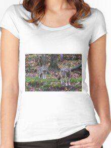 Pair of coyotes in a forest Women's Fitted Scoop T-Shirt