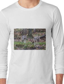 Pair of coyotes in a forest Long Sleeve T-Shirt