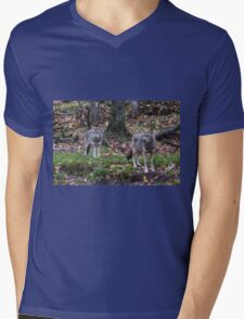 Pair of coyotes in a forest Mens V-Neck T-Shirt