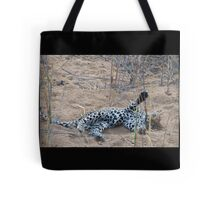 Leopard cub playing with reeds Tote Bag