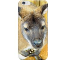 Curious Wallaby iPhone Case/Skin