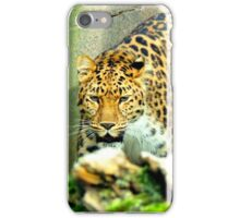 Amur Leopard iPhone Case/Skin