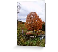 Peaking Tree Greeting Card