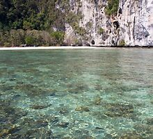 Tropical clear waters by Kevin Hellon
