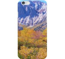 COLORFUL AUTUMN MOUNTAIN RANGE IN MAMMOTH MOUNTAIN iPhone Case/Skin