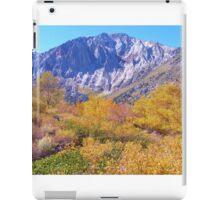 COLORFUL AUTUMN MOUNTAIN RANGE IN MAMMOTH MOUNTAIN iPad Case/Skin