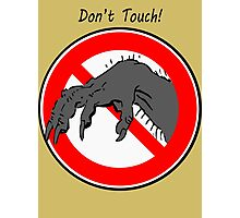 Don't touch....! Photographic Print