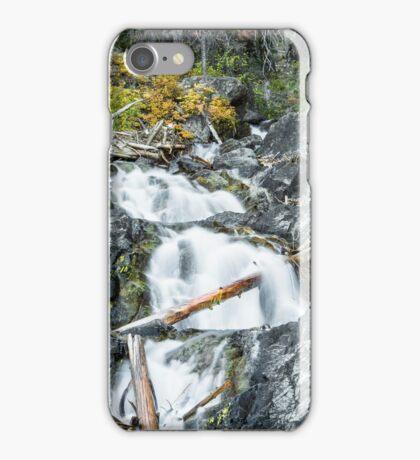 Upper Teanaway River iPhone Case/Skin