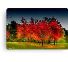 """"""" Red Dawn """" Canvas Print"""