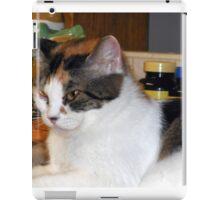 A Lovely Cat iPad Case/Skin