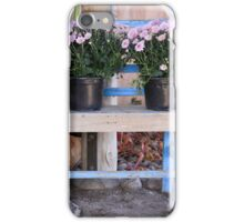 New Mexican Still Life iPhone Case/Skin