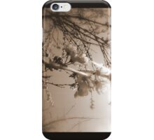 cherry blossoms in the sun, sepia iPhone Case/Skin