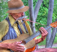 Traveling Troubadour by shutterbug2010