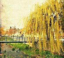The Willow by IOANNA PAPANIKOLAOU