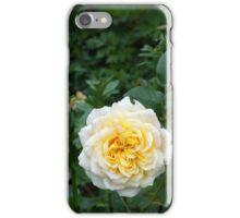 NZ Rose iPhone Case/Skin